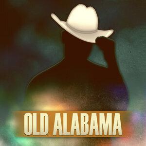 Alabama Daisies 歌手頭像