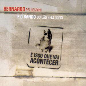 Bernardo Pellegrini e o Bando do Cão Sem Dono 歌手頭像