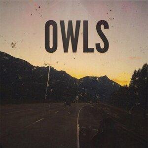 Owls 歌手頭像