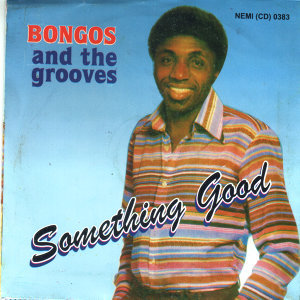 Bongos And The Grooves 歌手頭像
