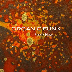 Organic Funk 歌手頭像