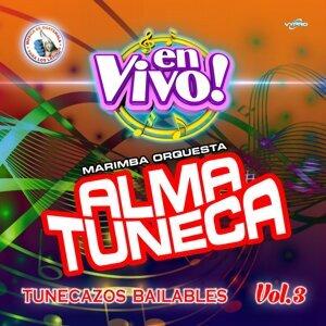 Marimba Orquesta Alma Tuneca 歌手頭像