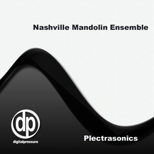Nashville Mandolin Ensemble 歌手頭像
