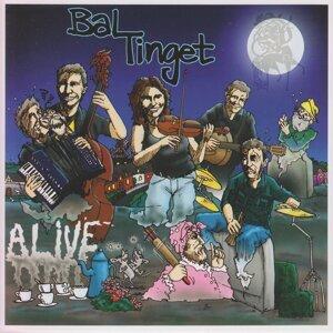 Baltinget 歌手頭像