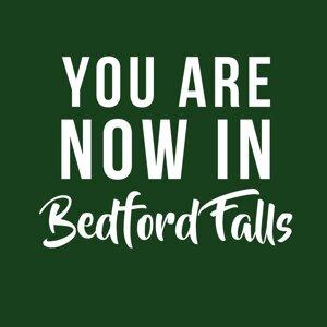 Bedford Falls 歌手頭像