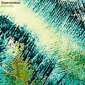 Superpumas