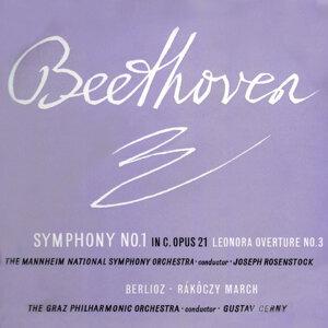Mannheim National Symphony Orchestra 歌手頭像