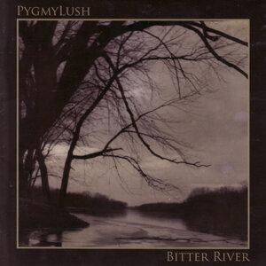 Pygmy Lush 歌手頭像