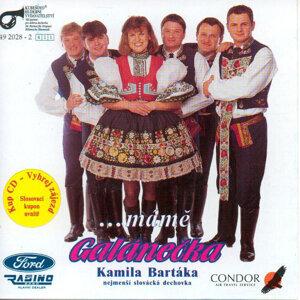 Kamil Barták 歌手頭像