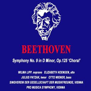 Vienna Pro Musica 歌手頭像