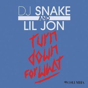 DJ Snake & Lil Jon 歌手頭像