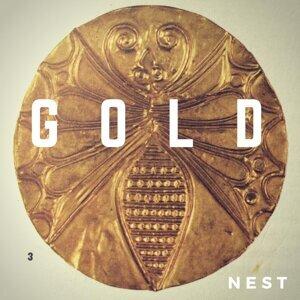 Nest 歌手頭像