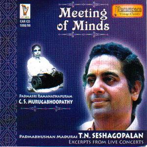 Madurai T.N.Seshagopalan 歌手頭像
