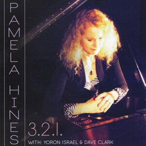 Pamela Hines Trio 歌手頭像
