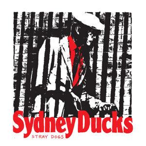 Sydney Ducks 歌手頭像
