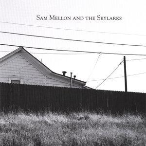 Sam Mellon and the Skylarks 歌手頭像