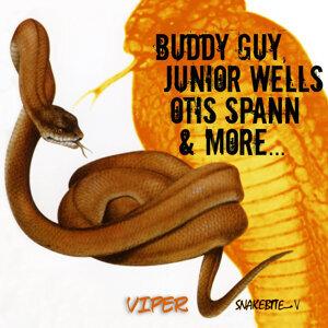 Buddy Guy, Junior Wells, Otis Spann 歌手頭像