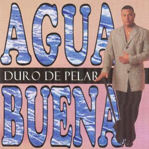 Aqua Buena 歌手頭像