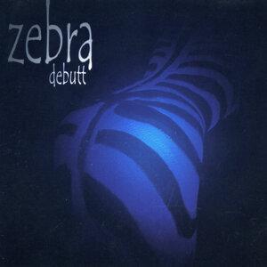 Zebra. Ecuador 歌手頭像