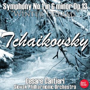 Slovak Philharmonic Orchestra & Cesare Cantieri 歌手頭像
