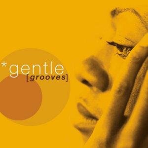 Gentle Grooves 歌手頭像