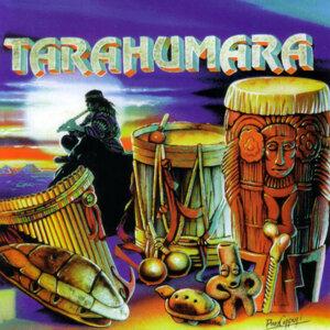Tarahumara 歌手頭像