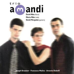 Trio Amandi 歌手頭像