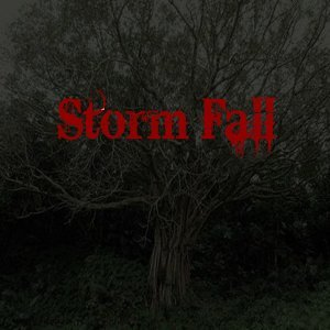 Storm Fall 歌手頭像