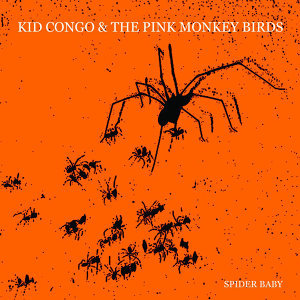 Kid Congo & the Pink Monkey Birds 歌手頭像