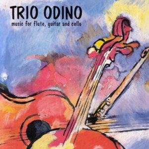 Trio Odino 歌手頭像