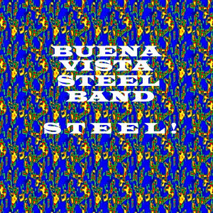 Buena Vista Steel Band