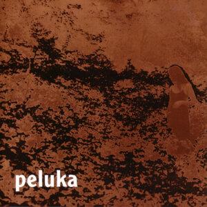 Peluka