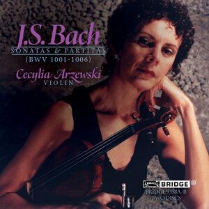 Cecylia Arzewski 歌手頭像