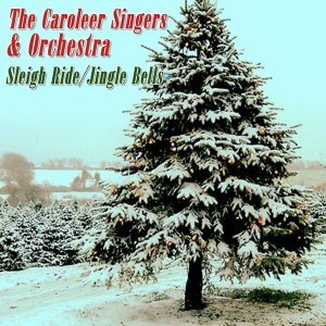The Caroleer Singers & Orchestra 歌手頭像