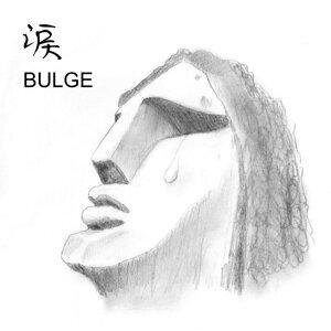 BULGE 歌手頭像