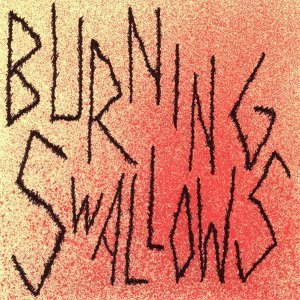 Burning Swallows 歌手頭像