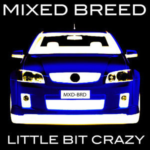 Mixed Breed
