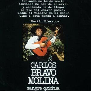 Carlos Bravo Molina 歌手頭像