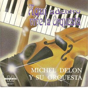 Michel Delon y su orquesta 歌手頭像