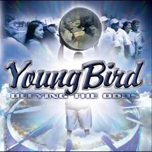 Young Bird 歌手頭像