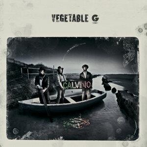 Vegetable G 歌手頭像