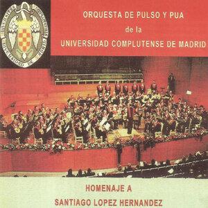 Orquesta de Pulso y Pua de la Universidad Complutense de Madrid 歌手頭像