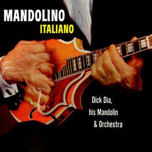 Dick Dia,His Mandoline & Orchestra 歌手頭像