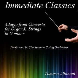 The Summer String Orchestra 歌手頭像