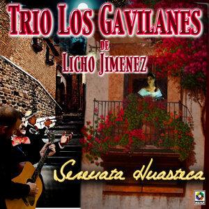Trio Los Gavilanes De Licho Jimenez 歌手頭像