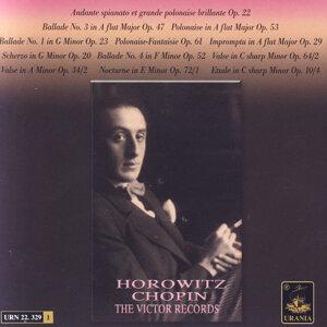 Vladimir Horwitz 歌手頭像