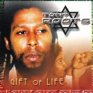 Tony Roots 歌手頭像
