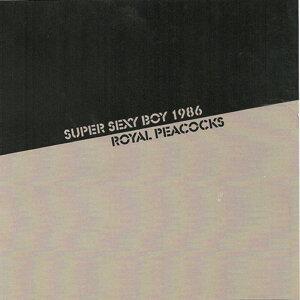 Super Sexy Boy 1986 歌手頭像