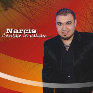 Narcis 歌手頭像