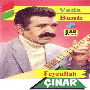 Feyzullah Çınar 歌手頭像